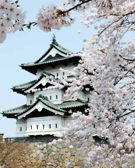 弘前城と桜満開